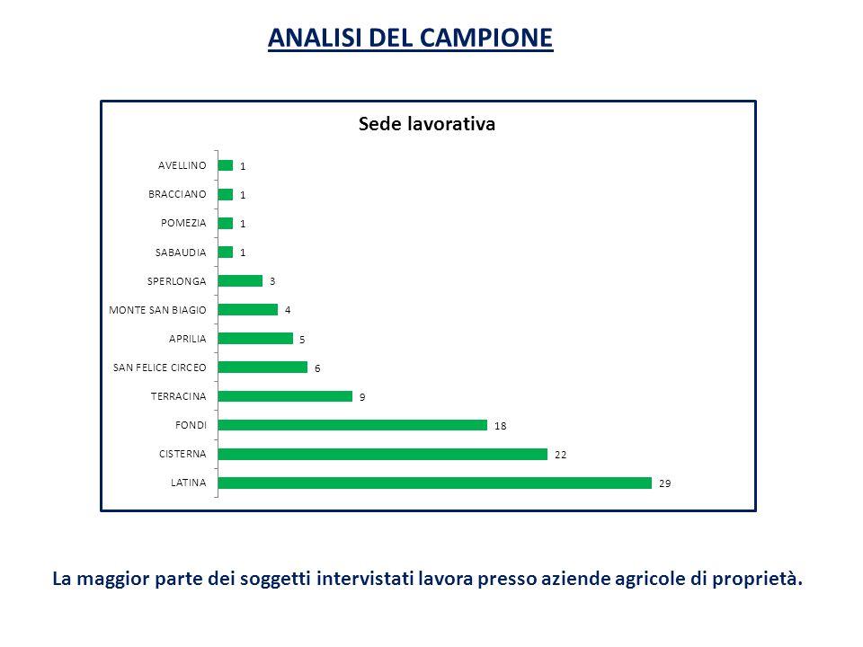ANALISI DEL CAMPIONELa maggior parte dei soggetti intervistati lavora presso aziende agricole di proprietà.