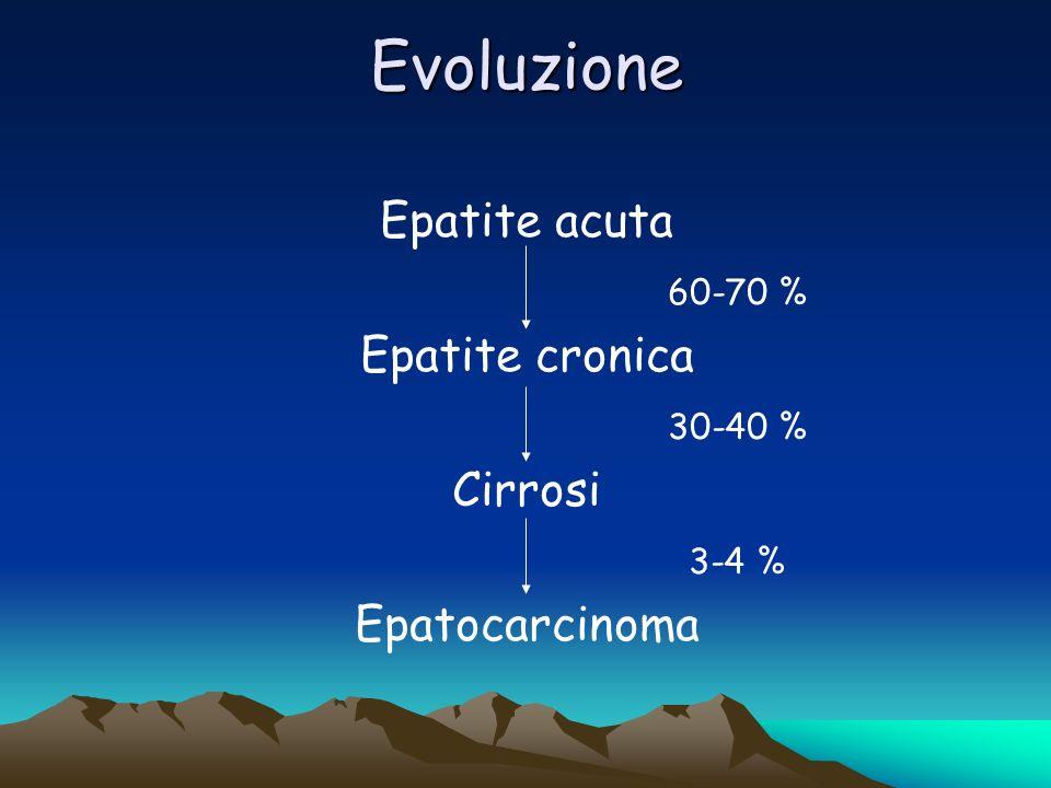 Evoluzione Epatite acuta 60-70 % Epatite cronica 30-40 % Cirrosi 3-4 %