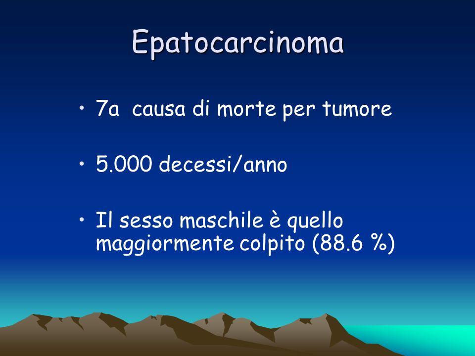 Epatocarcinoma 7a causa di morte per tumore 5.000 decessi/anno