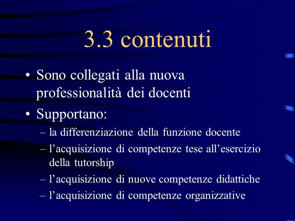 3.3 contenuti Sono collegati alla nuova professionalità dei docenti
