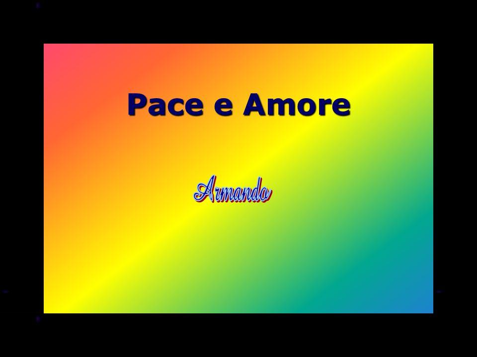 Pace e Amore Armando