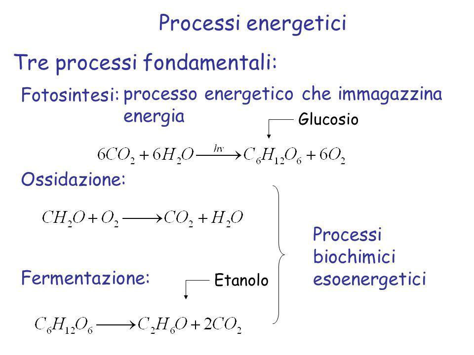 Tre processi fondamentali: