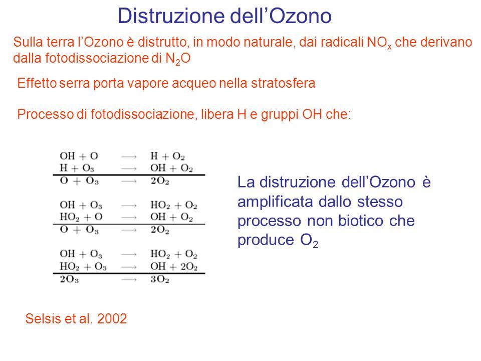 Distruzione dell'Ozono