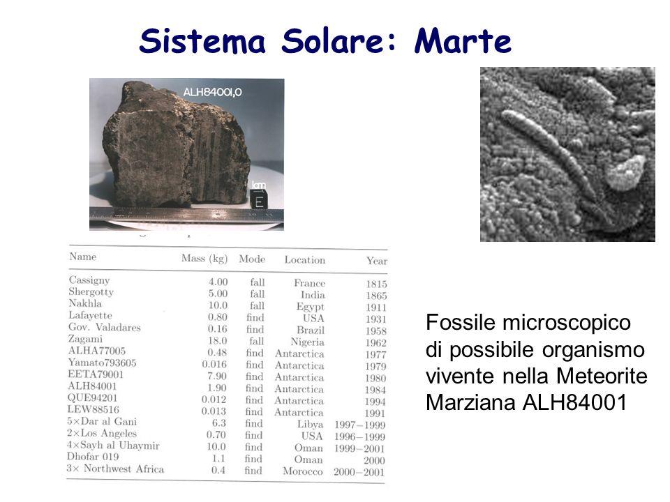 Sistema Solare: Marte Fossile microscopico di possibile organismo vivente nella Meteorite Marziana ALH84001.