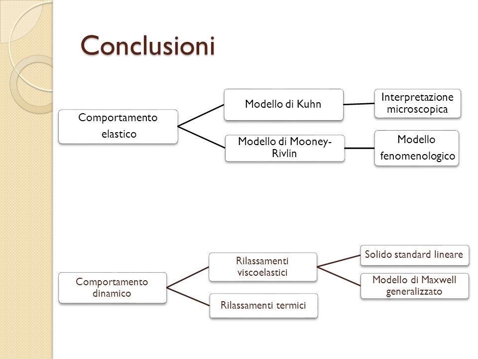 Conclusioni Comportamento elastico Modello di Kuhn