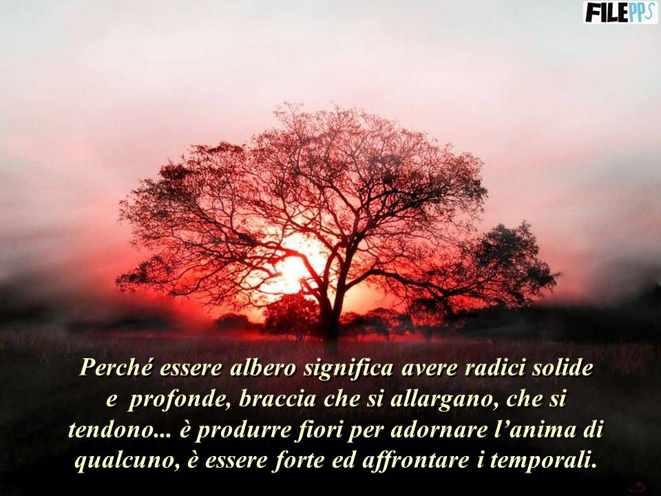 Perché essere albero significa avere radici solide e profonde, braccia che si allargano, che si tendono...