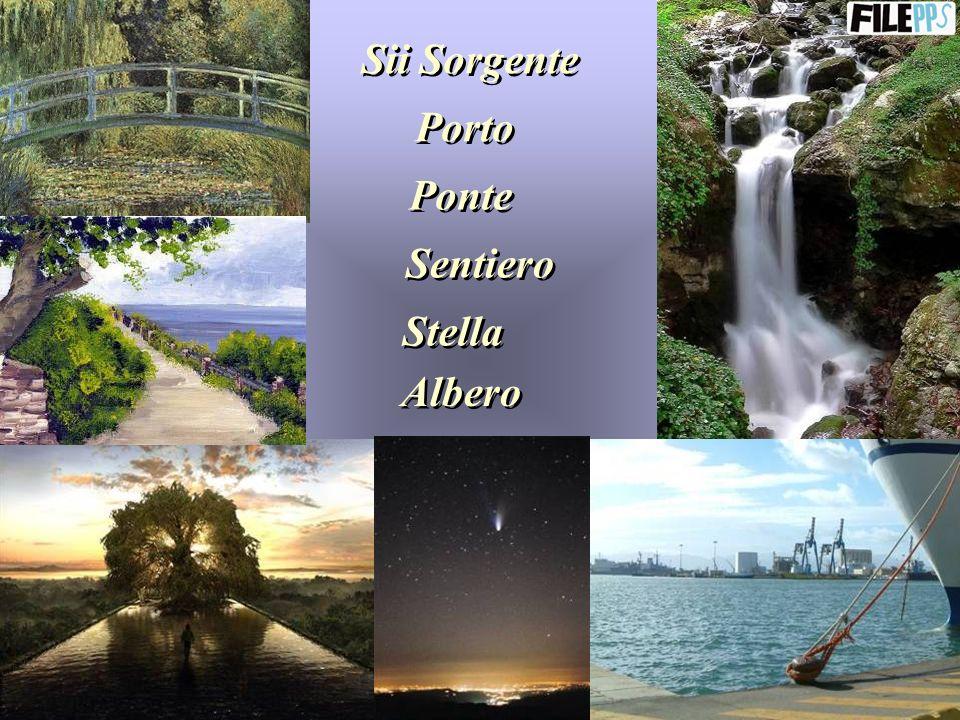 Sii Sorgente Porto Ponte Sentiero Stella Albero