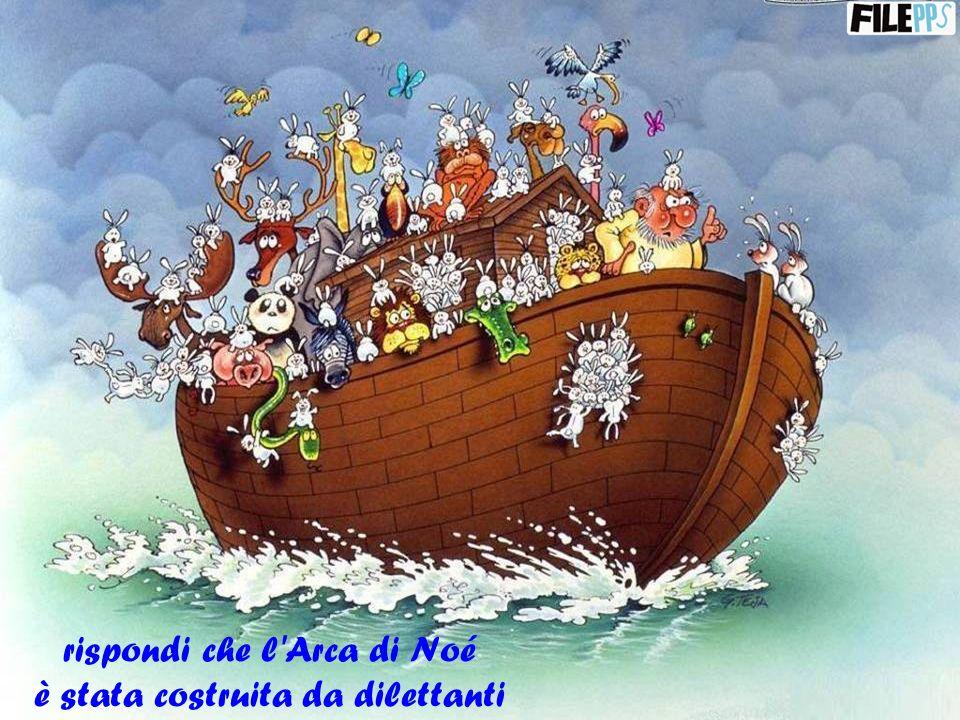 rispondi che l Arca di Noé è stata costruita da dilettanti
