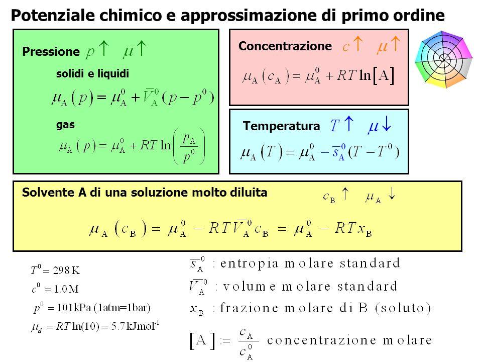 Potenziale chimico e approssimazione di primo ordine