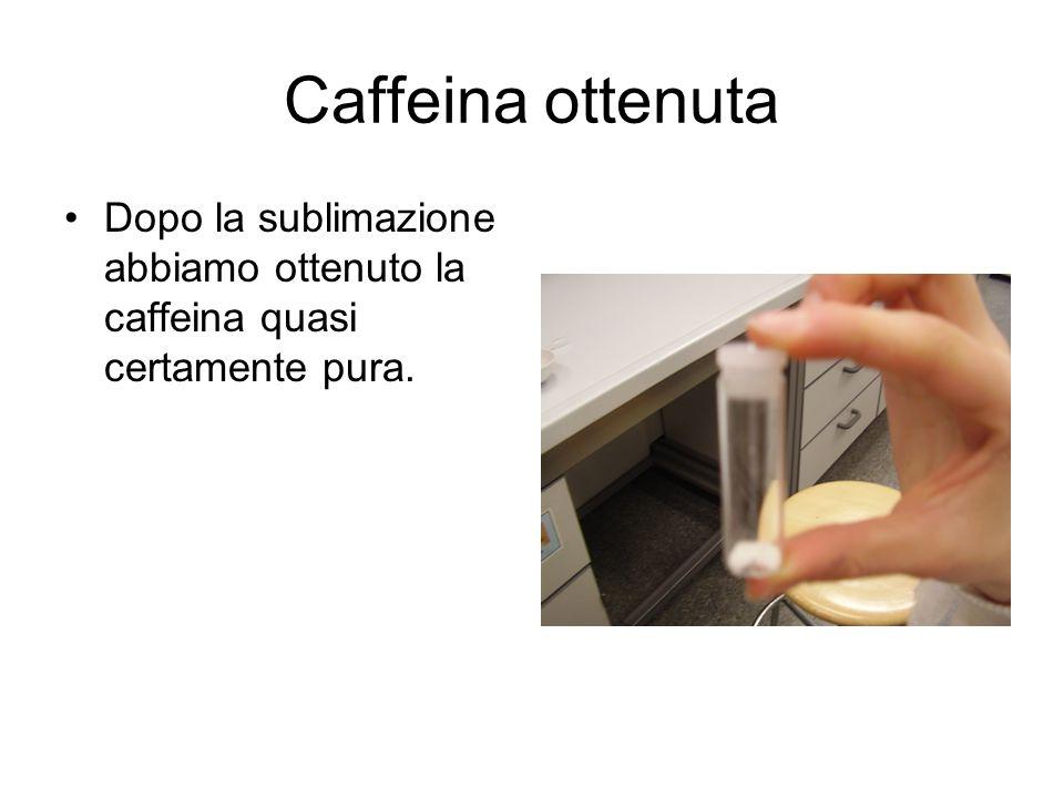 Caffeina ottenuta Dopo la sublimazione abbiamo ottenuto la caffeina quasi certamente pura.