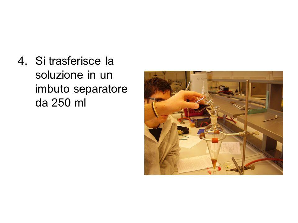 Si trasferisce la soluzione in un imbuto separatore da 250 ml