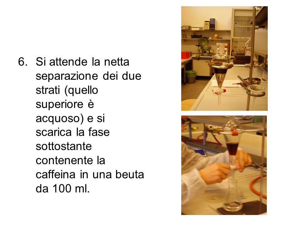 Si attende la netta separazione dei due strati (quello superiore è acquoso) e si scarica la fase sottostante contenente la caffeina in una beuta da 100 ml.