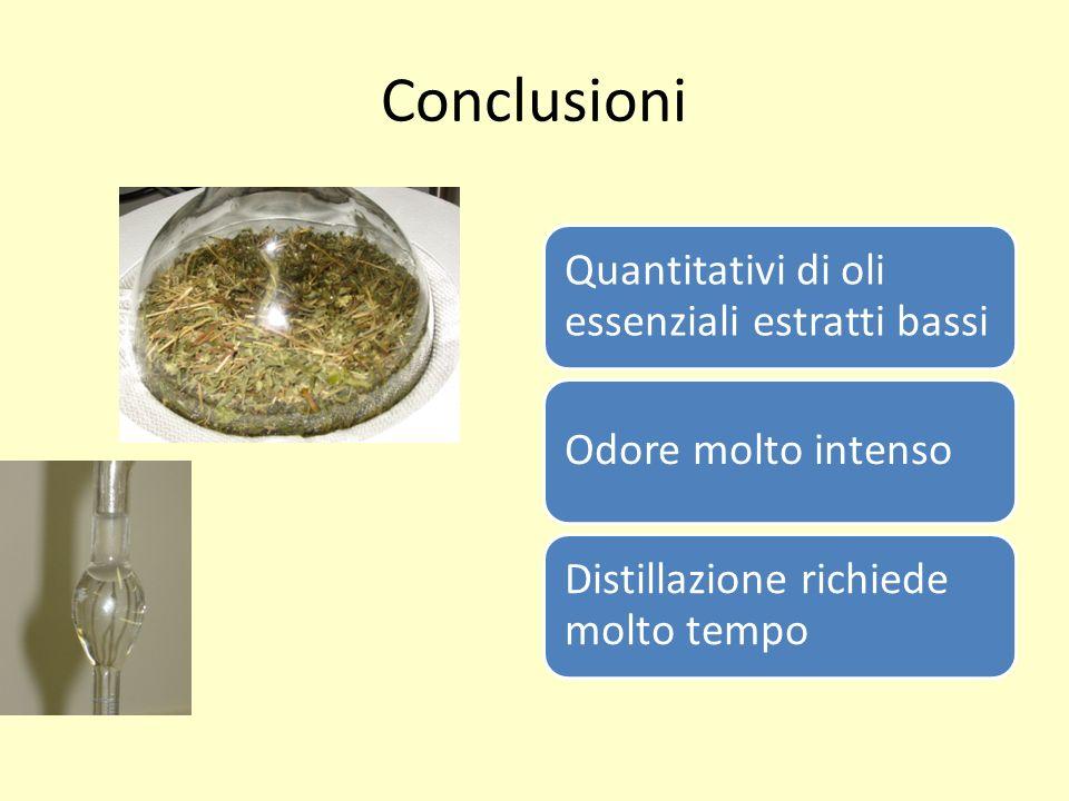 Conclusioni Quantitativi di oli essenziali estratti bassi