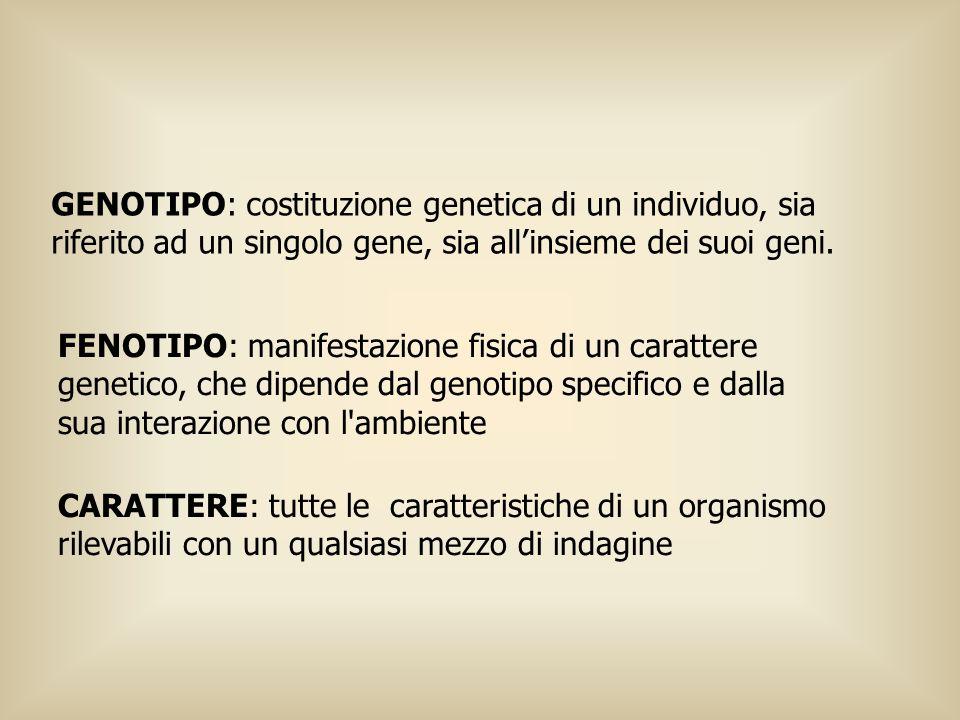 GENOTIPO: costituzione genetica di un individuo, sia riferito ad un singolo gene, sia all'insieme dei suoi geni.