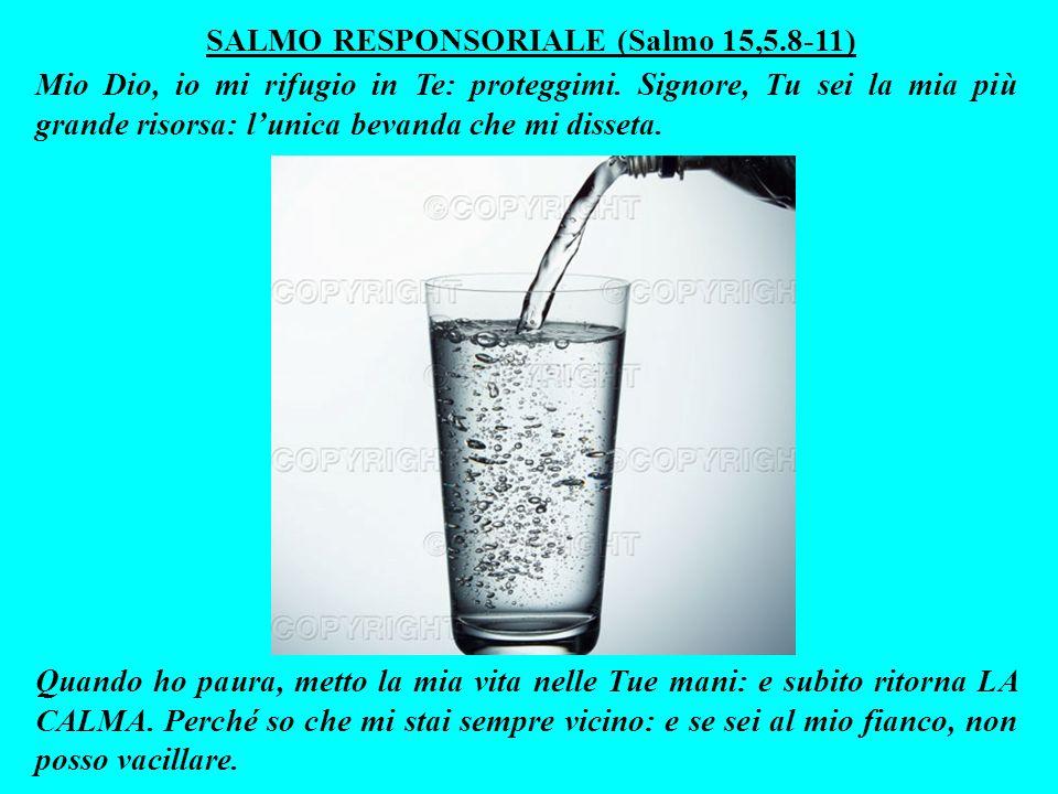 SALMO RESPONSORIALE (Salmo 15,5.8-11)