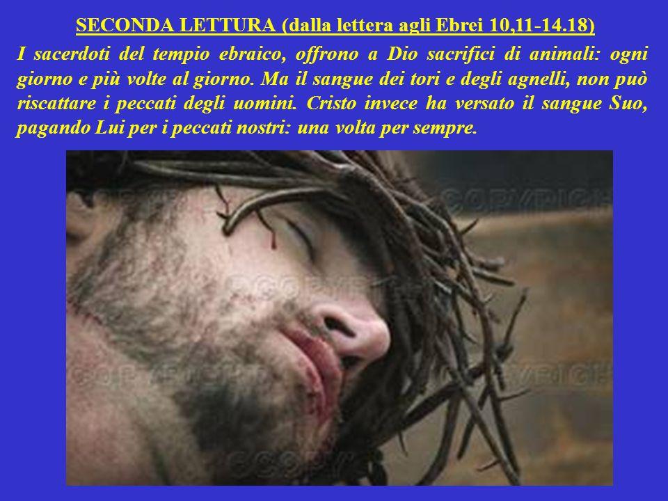 SECONDA LETTURA (dalla lettera agli Ebrei 10,11-14.18)
