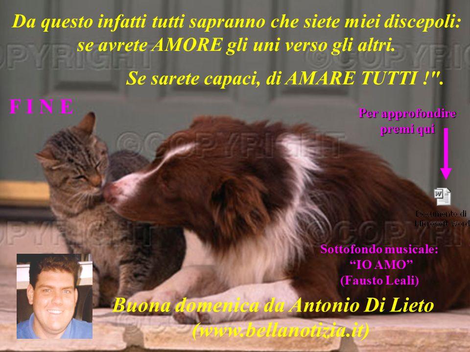 Buona domenica da Antonio Di Lieto (www.bellanotizia.it)