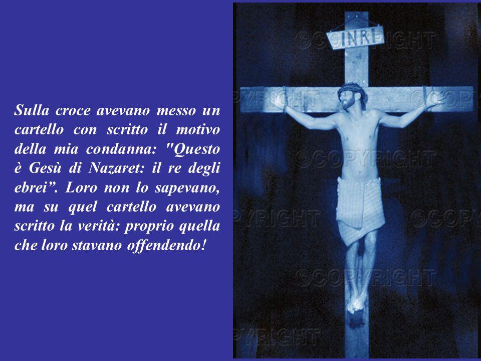 Sulla croce avevano messo un cartello con scritto il motivo della mia condanna: Questo è Gesù di Nazaret: il re degli ebrei .