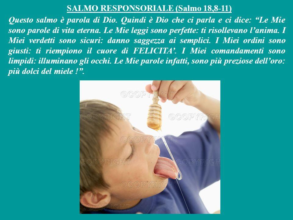 SALMO RESPONSORIALE (Salmo 18,8-11)