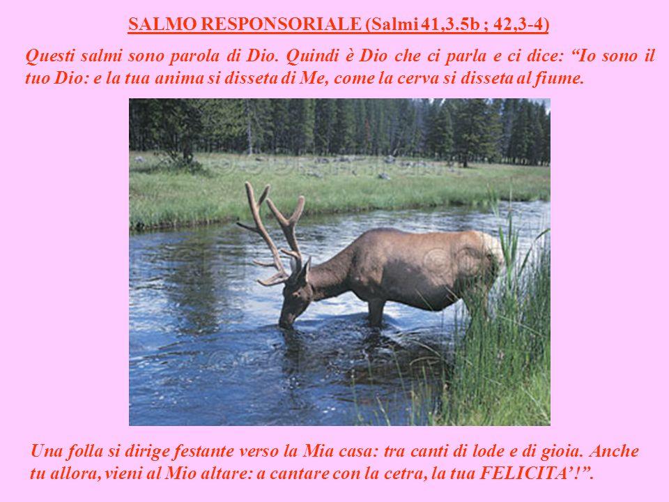 SALMO RESPONSORIALE (Salmi 41,3.5b ; 42,3-4)