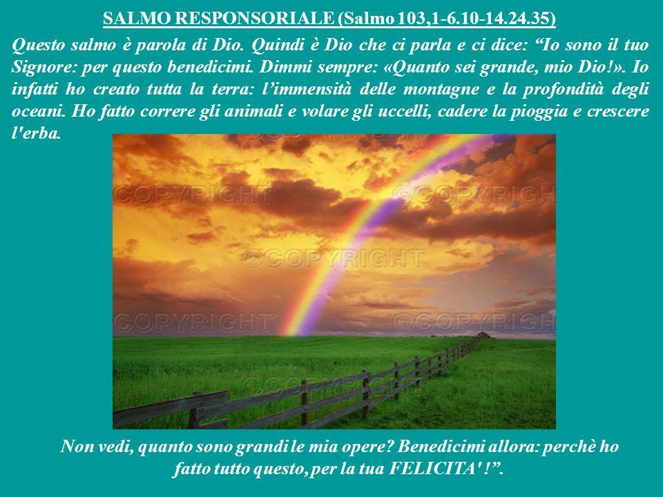 SALMO RESPONSORIALE (Salmo 103,1-6.10-14.24.35)