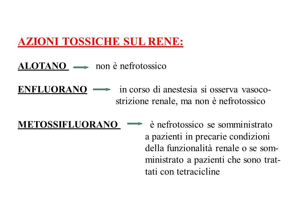 AZIONI TOSSICHE SUL RENE: