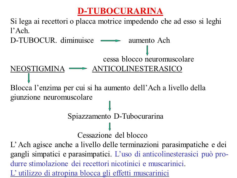 D-TUBOCURARINA Si lega ai recettori o placca motrice impedendo che ad esso si leghi. l'Ach. D-TUBOCUR. diminuisce aumento Ach.