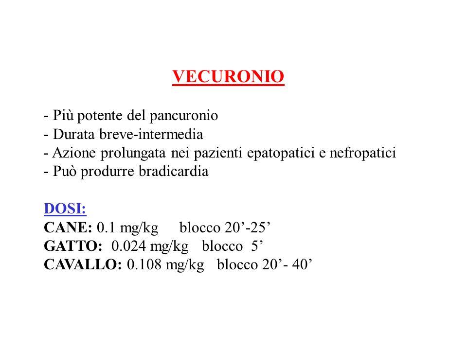 VECURONIO - Più potente del pancuronio. - Durata breve-intermedia. - Azione prolungata nei pazienti epatopatici e nefropatici.