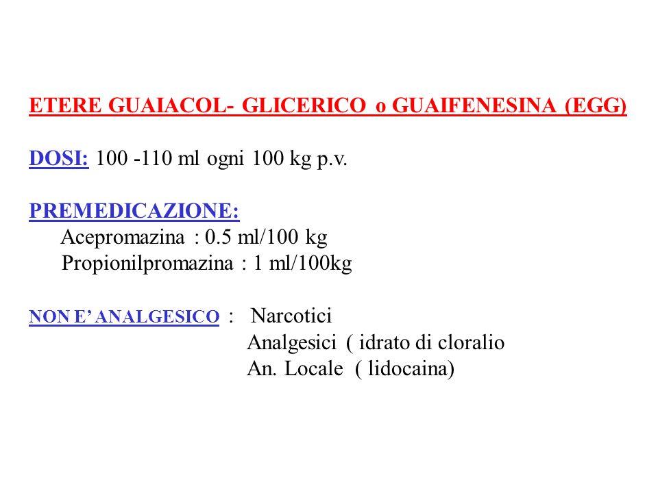 ETERE GUAIACOL- GLICERICO o GUAIFENESINA (EGG)