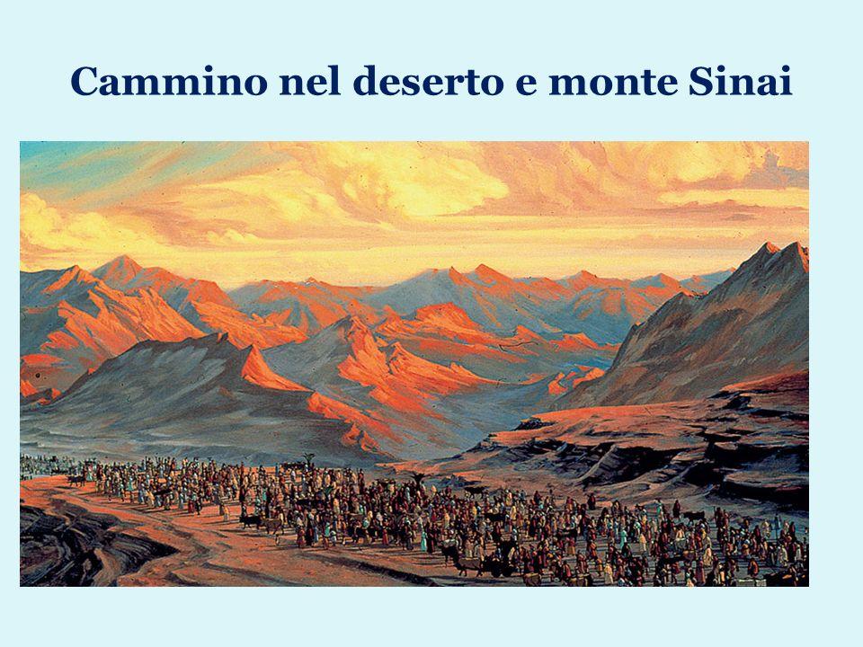 Cammino nel deserto e monte Sinai