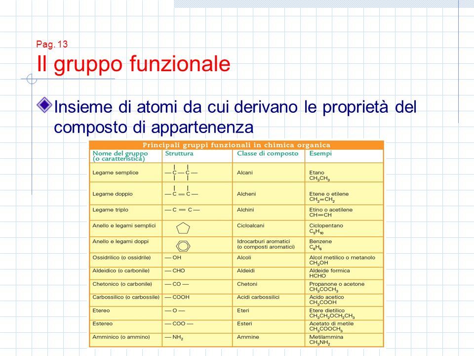 Pag. 13 Il gruppo funzionale