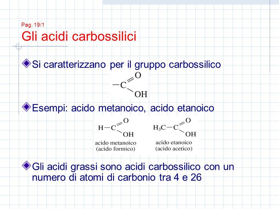 Pag. 19/1 Gli acidi carbossilici