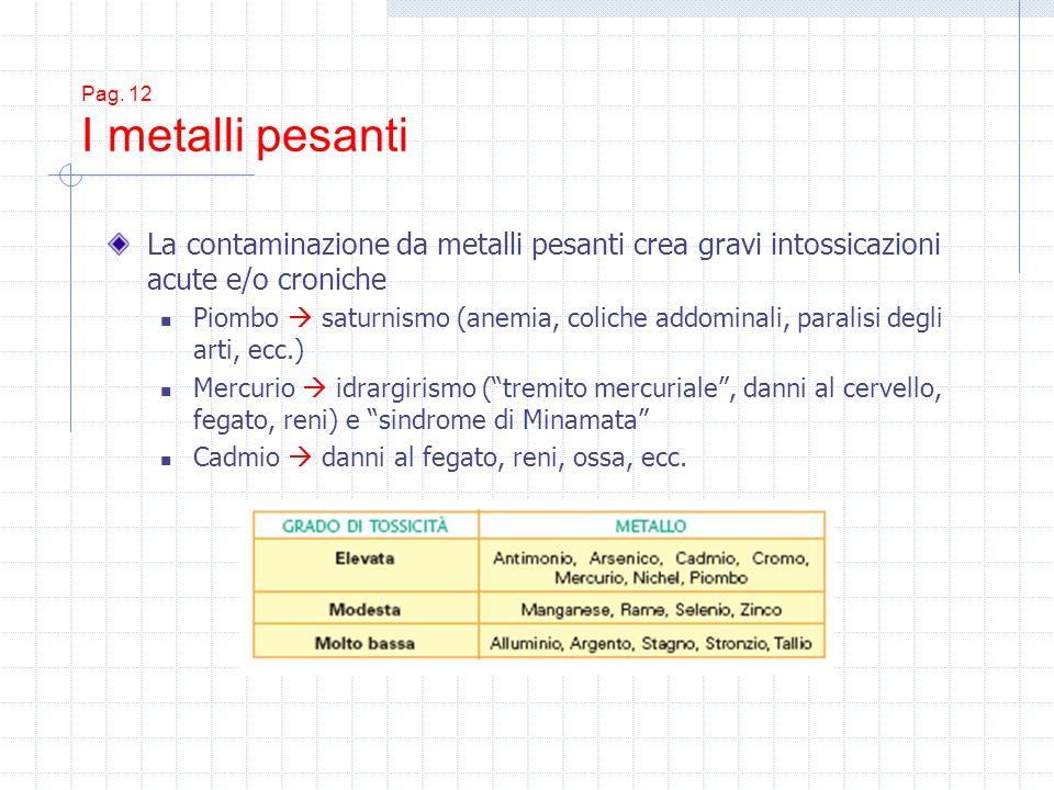 Pag. 12 I metalli pesanti La contaminazione da metalli pesanti crea gravi intossicazioni acute e/o croniche.