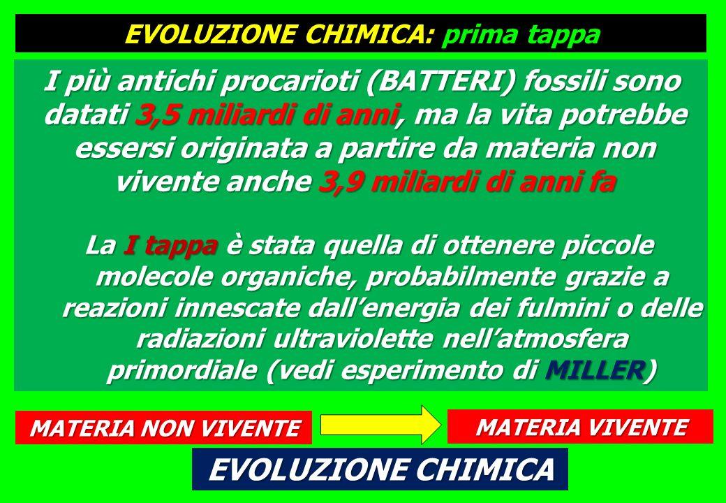 EVOLUZIONE CHIMICA: prima tappa