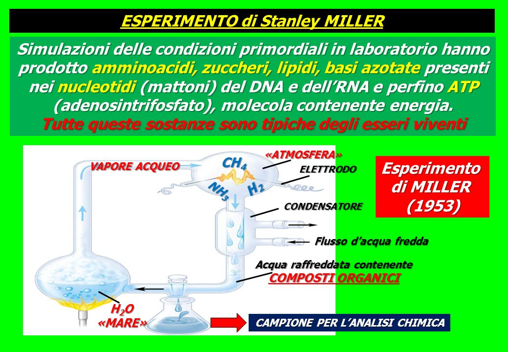 ESPERIMENTO di Stanley MILLER