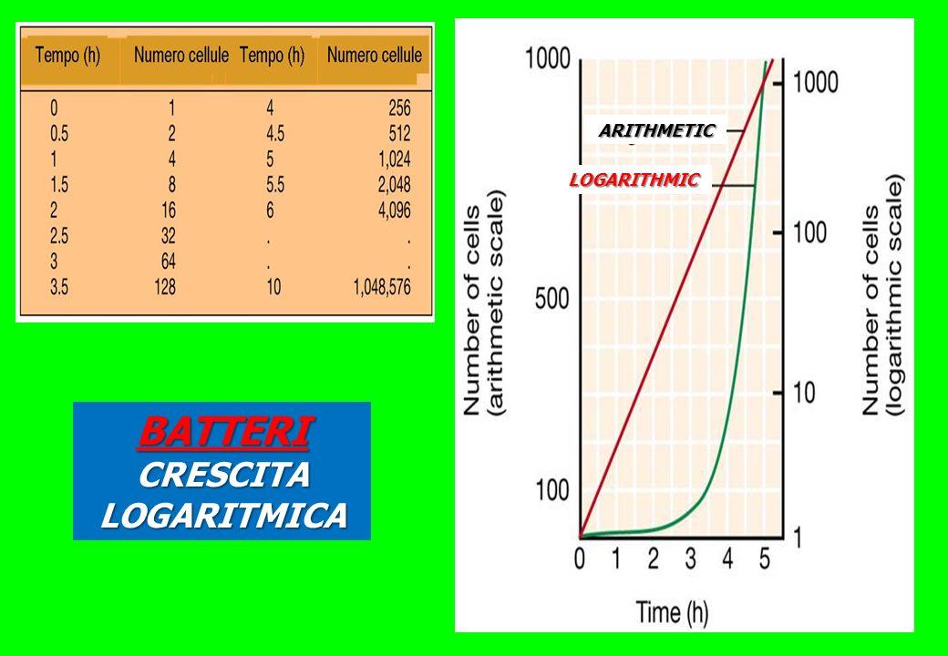 ARITHMETIC LOGARITHMIC BATTERI CRESCITA LOGARITMICA