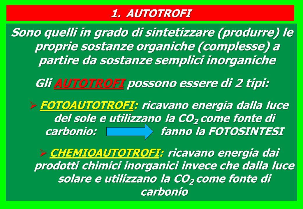 Gli AUTOTROFI possono essere di 2 tipi: