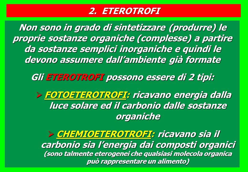 Gli ETEROTROFI possono essere di 2 tipi: