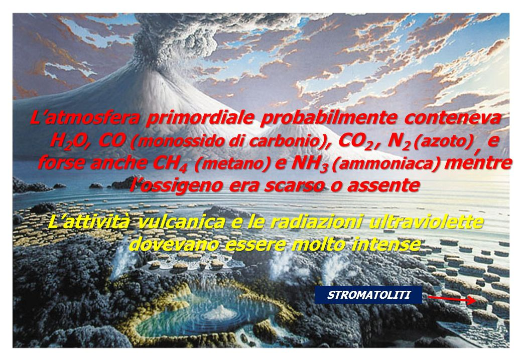 L'atmosfera primordiale probabilmente conteneva H2O, CO (monossido di carbonio), CO2 , N2 (azoto) , e forse anche CH4 (metano) e NH3 (ammoniaca) mentre l'ossigeno era scarso o assente