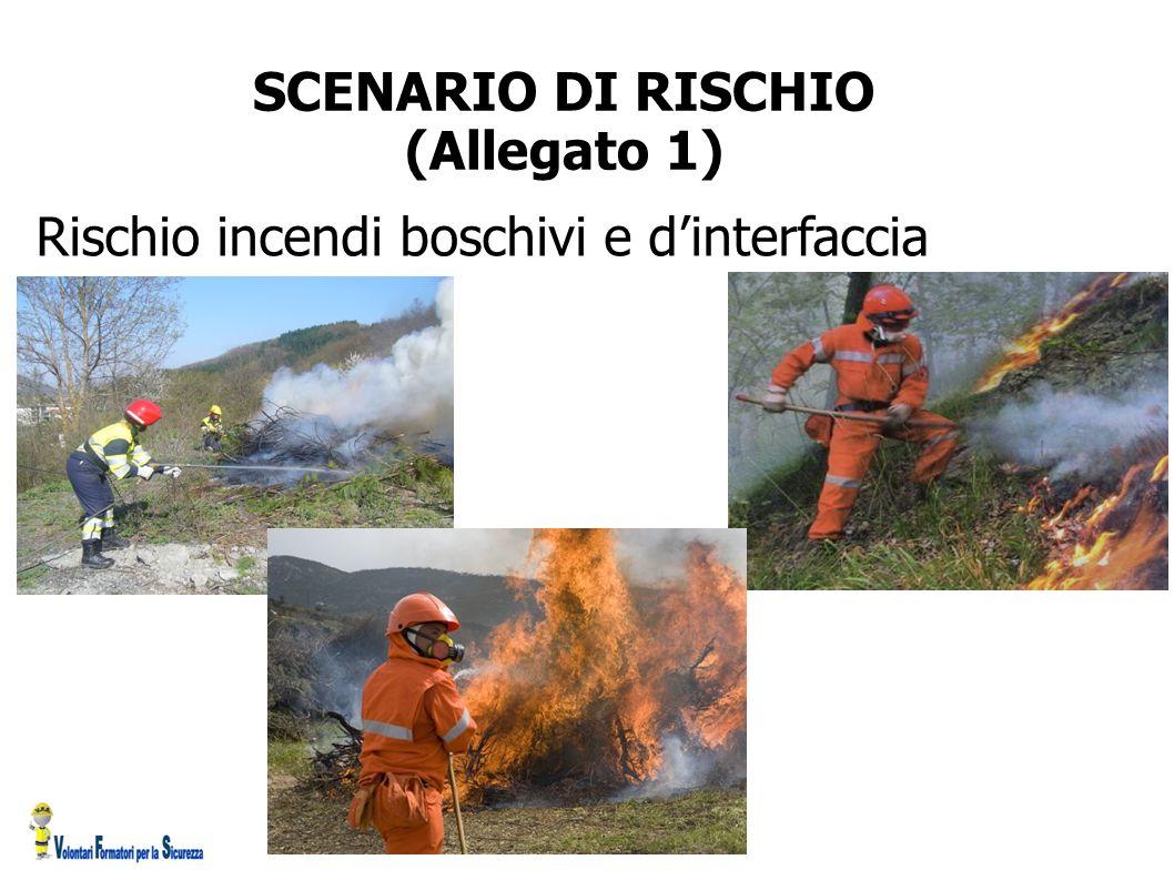 SCENARIO DI RISCHIO (Allegato 1)