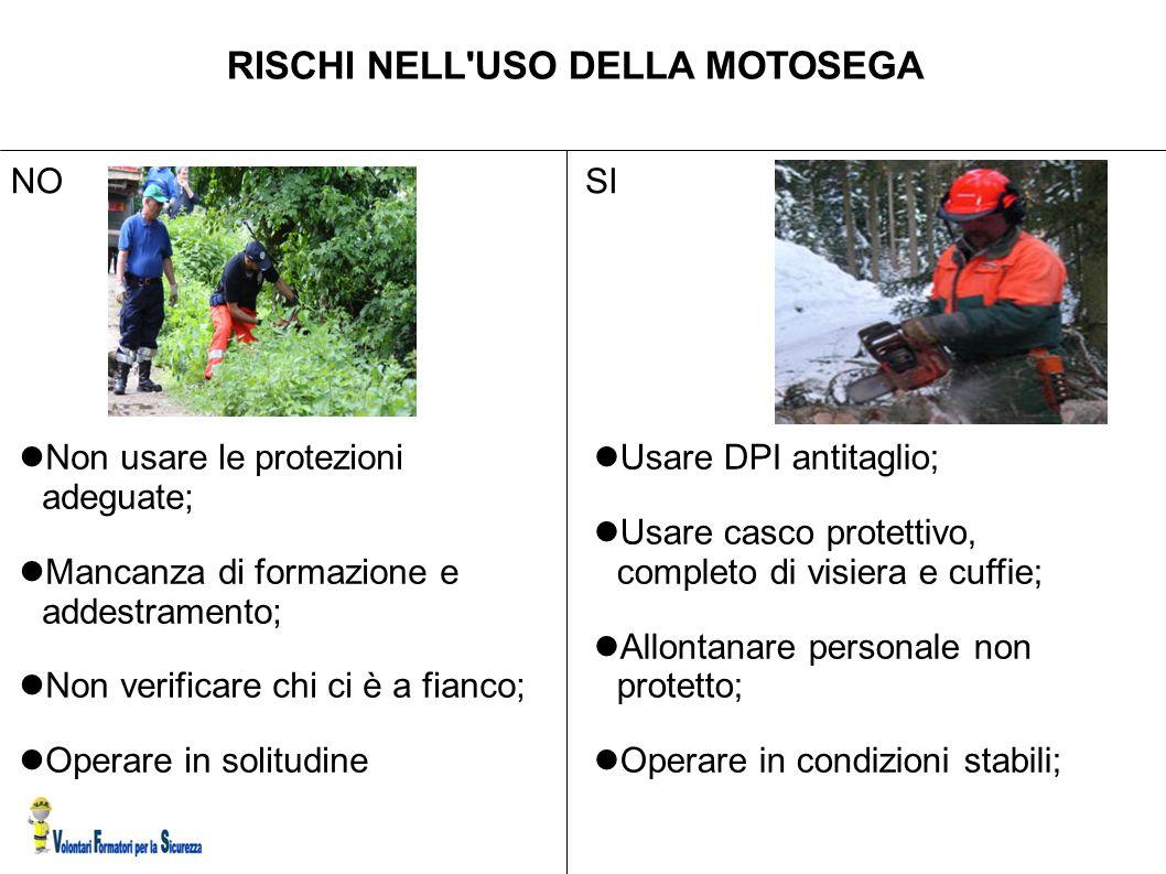 RISCHI NELL USO DELLA MOTOSEGA