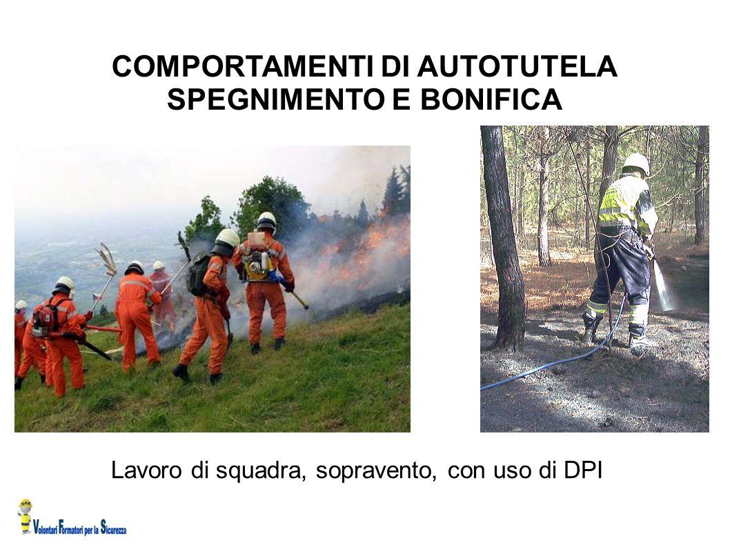 COMPORTAMENTI DI AUTOTUTELA SPEGNIMENTO E BONIFICA
