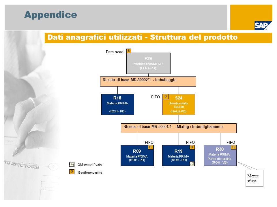 Appendice Dati anagrafici utilizzati - Struttura del prodotto