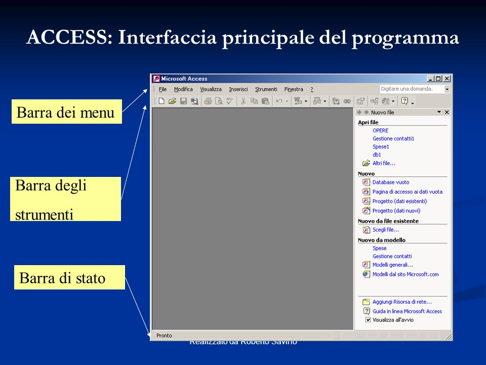 ACCESS: Interfaccia principale del programma