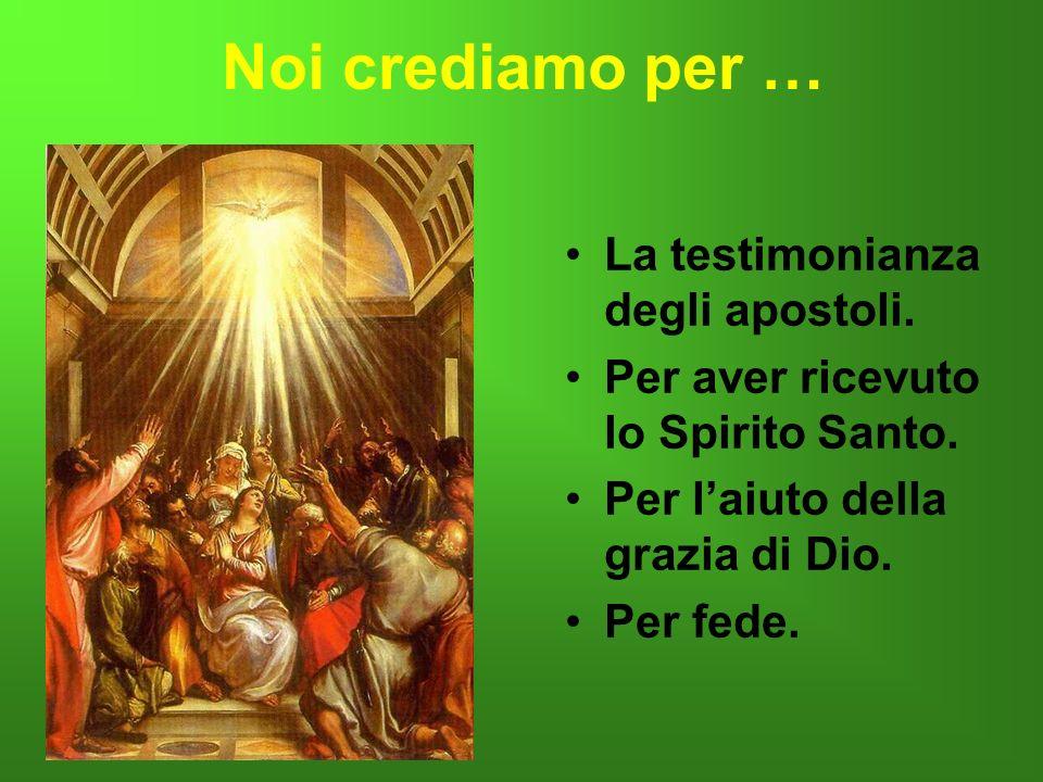 Noi crediamo per … La testimonianza degli apostoli.