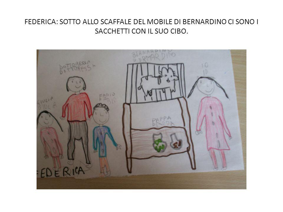 FEDERICA: SOTTO ALLO SCAFFALE DEL MOBILE DI BERNARDINO CI SONO I SACCHETTI CON IL SUO CIBO.