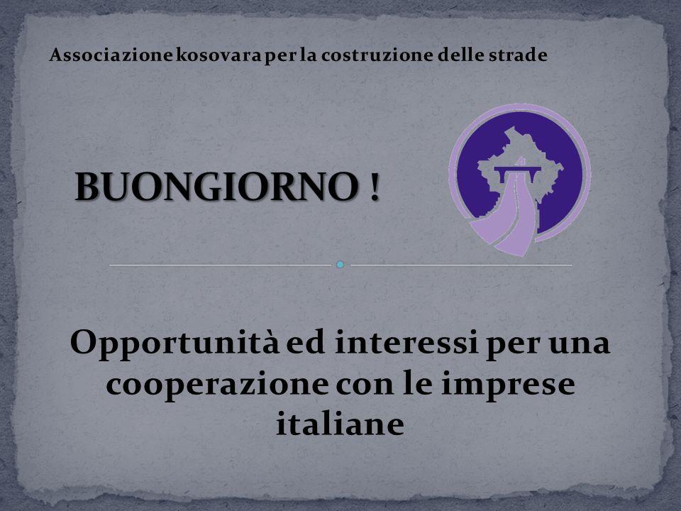 Opportunità ed interessi per una cooperazione con le imprese italiane