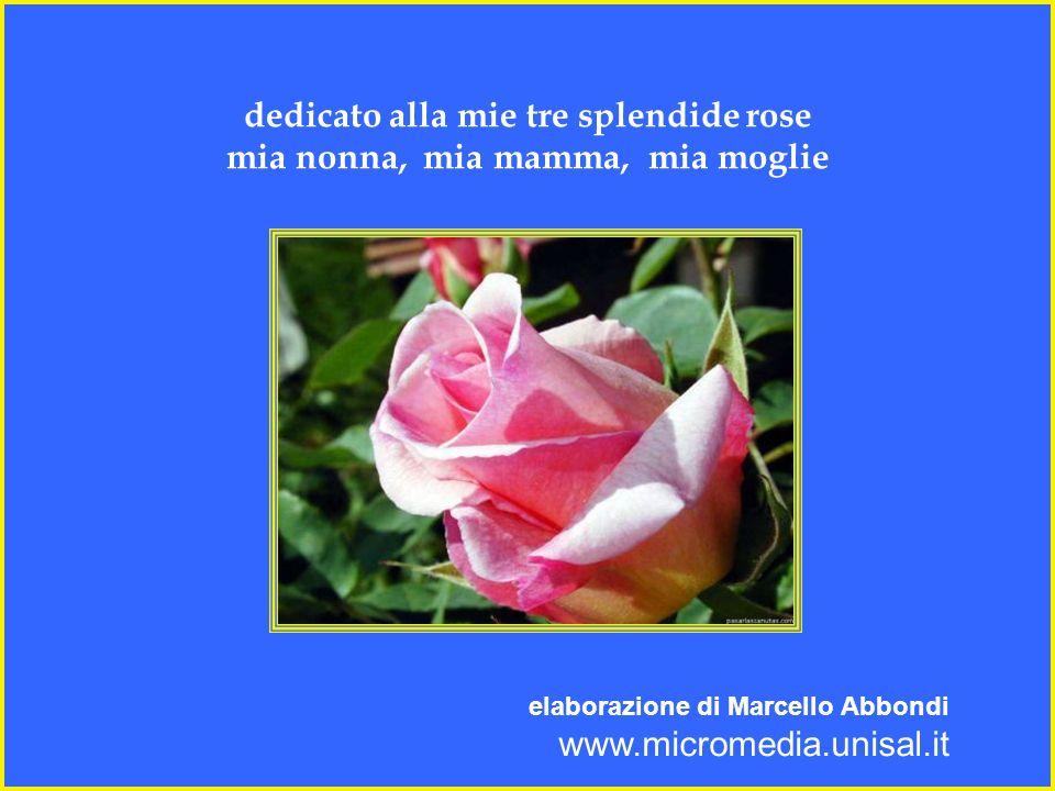 dedicato alla mie tre splendide rose mia nonna, mia mamma, mia moglie