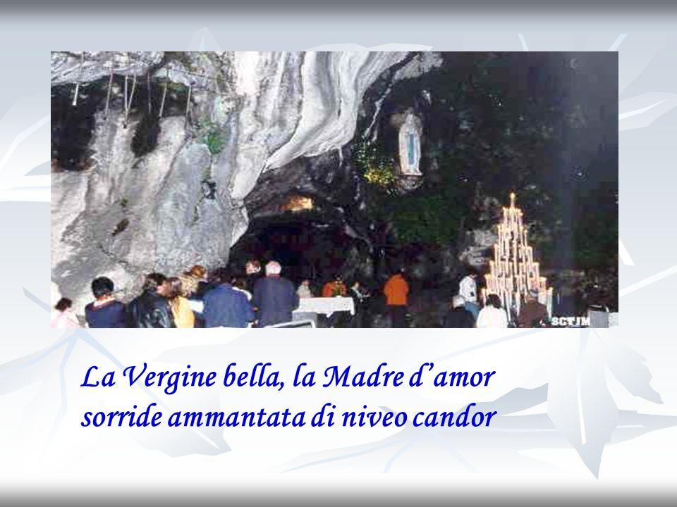 La Vergine bella, la Madre d'amor sorride ammantata di niveo candor