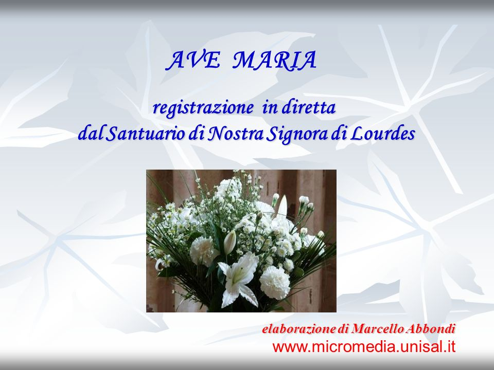 registrazione in diretta dal Santuario di Nostra Signora di Lourdes